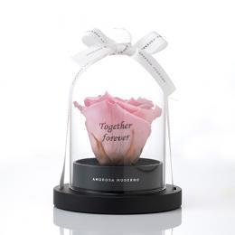 リトルベル Specialダイヤモンドローズ  ピンク