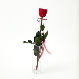 【バラ一輪】Specialダイヤモンドローズ メッセージフラワー レッド