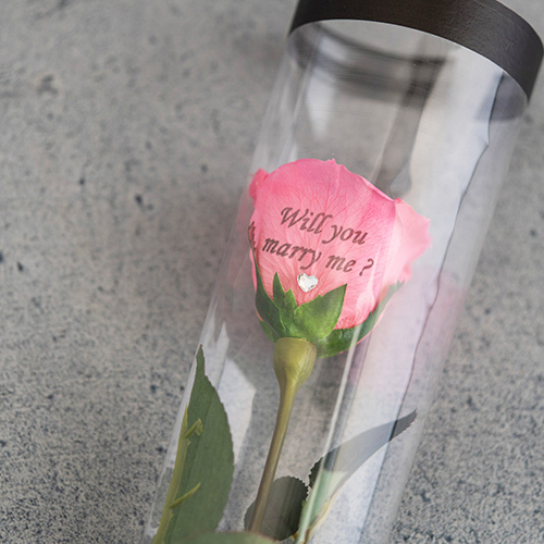【バラ一輪】プリザーブドフラワーローズ(専用バッグ付き)≪ストロベリーピンク≫