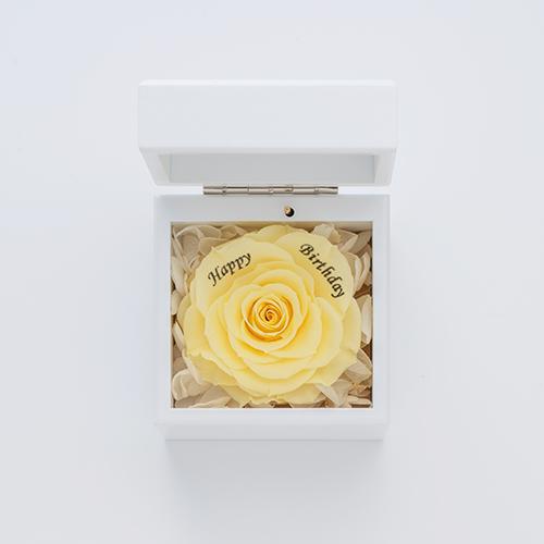 ミニ高級ホワイトオルゴールボックス≪イエロー≫